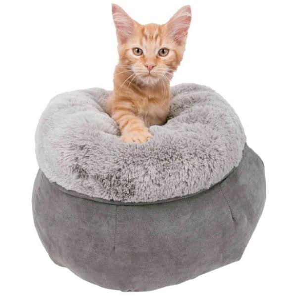 PHO PRO CAT CLIP 37709 1